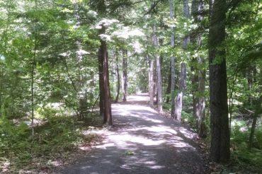 PLC Founding Project: New Boston Rail Trail