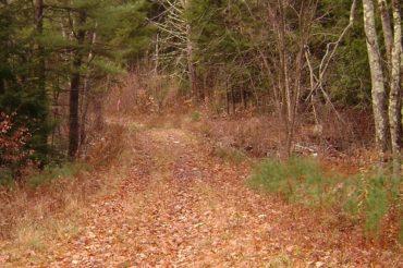 Post Thanksgiving Mountain Bike Ride